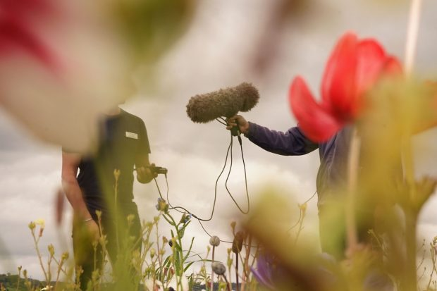 An image of Matt Smith working outside with one of his patients using sound as therapy. Matt is holding a large furry microphone attached to a recorder. Both Matt and the patient's faces are obscured by flowers close to the camera